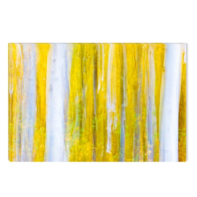 Canvas Wall Art Abstract White and Yellow Forest, Glowing in the Dark, 80 x 120 cm