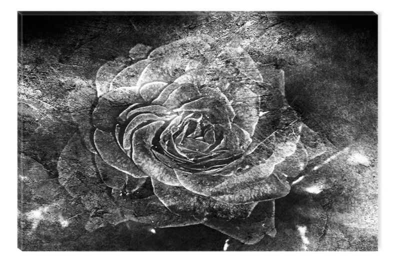 Black And White Abstract Canvas Wall Art Grunge Roses Glowing In The Dark  Cm