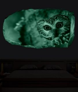 3D Mural Wall Art Owl, Glowing in the dark, 2.20 x 1.20 m
