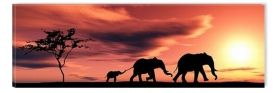 Canvas Wall Art Family of elephants, Glowing in the dark, 40 x 120 cm