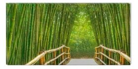 Canvas Wall Art Bamboo Alley, Glowing in the dark, 60 x 120 cm