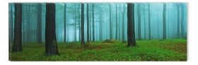 Canvas Wall Art Morning in the forest, Glowing in the dark, 40 x 120 cm