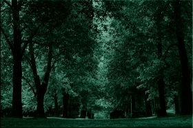 Canvas Wall Art Quiet green alley, Glowing in the dark, 80 x 120 cm