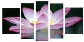 Glass Wall Art Pink flower, Glowing in the dark, Set of 5, 90 x 180 cm (1 panel 30 x 90 cm, 2 panels 30 x 80 cm, 2 panels 40 x 60 cm)