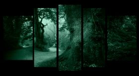 Glass Wall Art In the forest, Glowing in the dark, Set of 5, 90 x 180 cm (1 panel 30 x 90 cm, 2 panels 30 x 80 cm, 2 panels 40 x 60 cm)