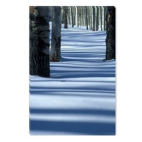 Canvas Wall Art Winter in the forest, Glowing in the dark, 80 x 120 cm