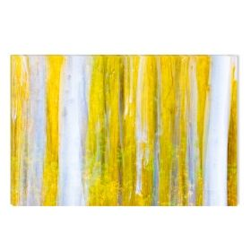 Canvas Wall Art White and yellow forest, Glowing in the dark, 80 x 120 cm