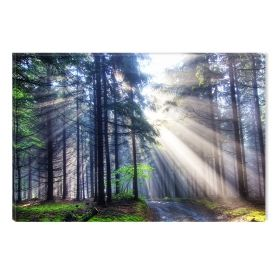 Canvas Wall Art Light in the forest, Glowing in the dark, 60 x 90 cm