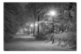 Black and White Abstract Canvas Wall Art Winter in the park, Glowing in the Dark, 80 x 120 cm
