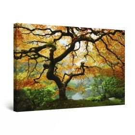 Canvas Wall Art Autumn maple, Glowing in the dark, 60 x 90 cm