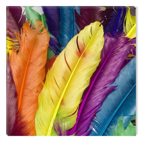 Glass Wall Art Colorful Feathers, Glowing in the dark, 60 x 60 cm