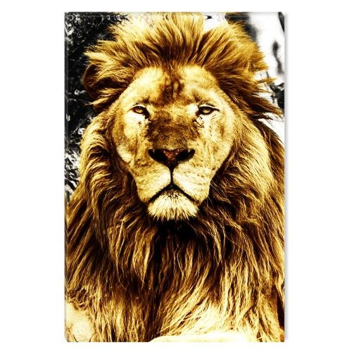Canvas Wall Art Supreme Lion, Glowing in the dark, 60 x 90 cm