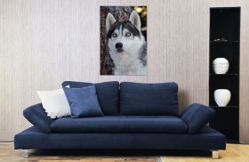 Tablou Husky, luminos in intuneric, 80 x 120 cm