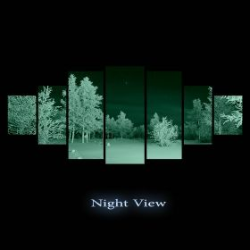 Canvas Wall Art Winter night, Glowing in the dark, Set of 7, 100 x 240 cm (1 panel 40 x 100 cm, 2 panels 35 x 90 cm, 2 panels 30 x 60 cm, 2 panels 30 x 40 cm)