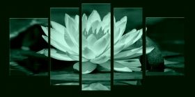 Canvas Wall Art Water lily, Glowing in the dark, Set of 5, 90 x 180 cm (1 panel 30 x 90 cm, 2 panels 30 x 80 cm, 2 panels 40 x 60 cm)