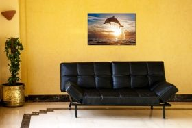 Glass Wall Art Dolphin, Glowing in the dark, 60 x 90 cm