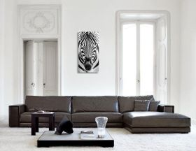 Tablou Plexiglas Zebra, luminos in intuneric, 40 x 120 cm