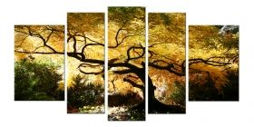 Glass Wall Art Canadian Maple, Glowing in the dark, Set of 5, 90 x 180 cm (1 panel 30 x 90 cm, 2 panels 30 x 80 cm, 2 panels 40 x 60 cm)