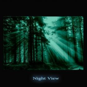 Canvas Wall Art Light in the forest, Glowing in the dark, 80 x 120 cm