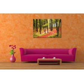 Canvas Wall Art Young forest, Glowing in the dark, 80 x 120 cm